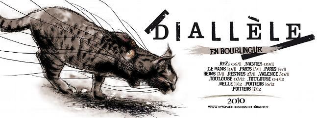 dialele40X15